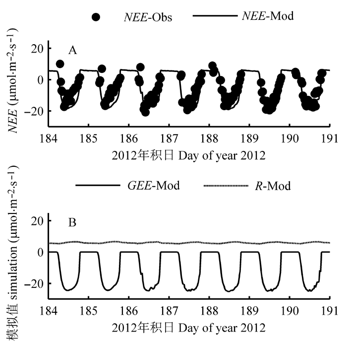 Optimization and evaluation of vegetation photosynthesis and